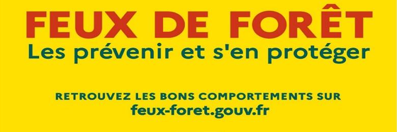 FEUX FORET