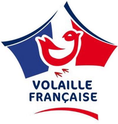 logo apvf